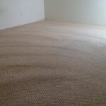 Carpet Cleaning (After)